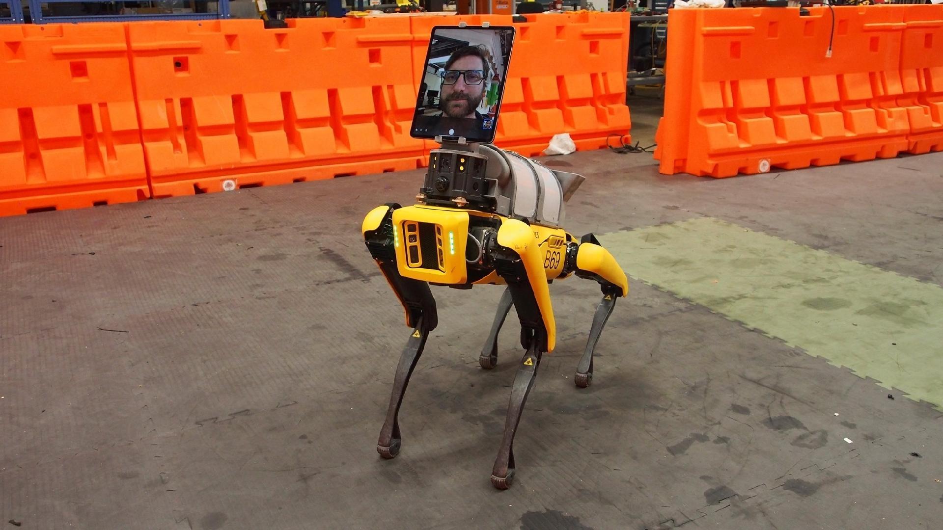 Cão robô Spot, da Boston Dynamics, já arruma casas e até planta flores