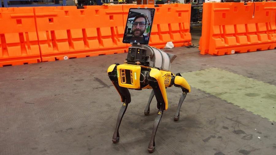 Cão-robô Spot, da Boston Dynamics - Divulgação