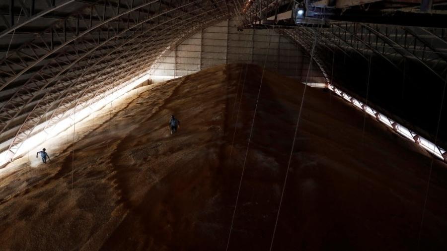 Projeção inclui cereais, leguminosas e oleaginosas produzido no país na safra 2021 - Nacho Doce/Reuters