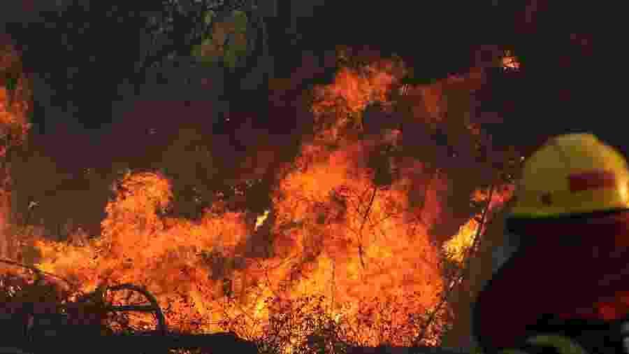 22.ago.2019 - Bombeiro trabalha no combate a incêndio em floresta na região de Santa Cruz, na Bolívia - STR/AFP