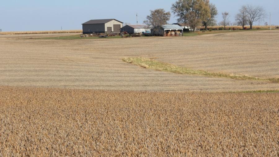 Campo de soja pronto para a colheita em Ottumwa, Iowa (EUA) - KIA JOHNSON