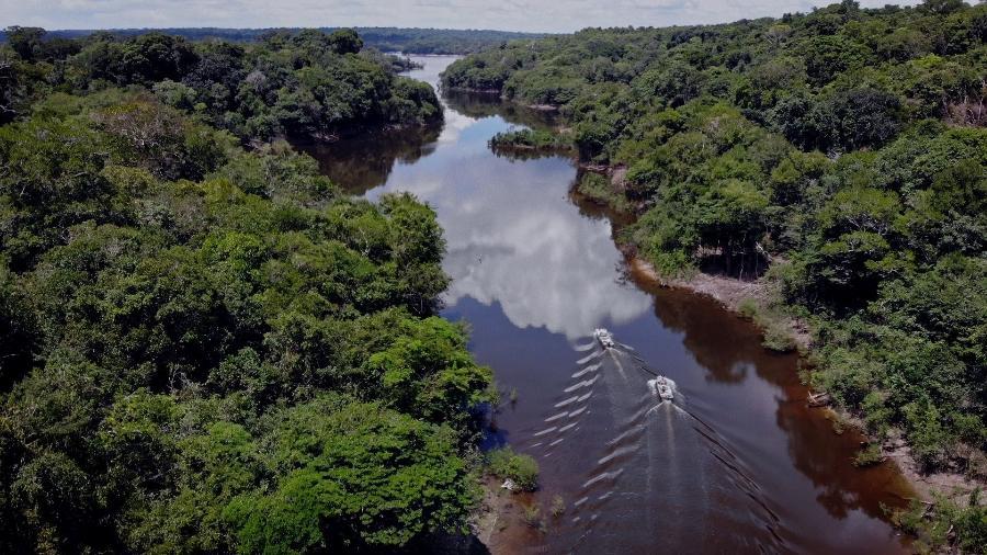 Vista aérea da Floresta Amazônica - Reprodução/Uzumaki