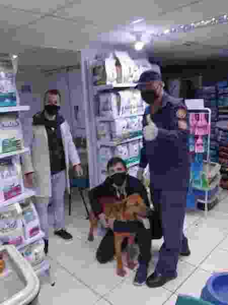 Animal foi levado para clínica veterinária para avaliação - Arquivo pessoal - Arquivo pessoal