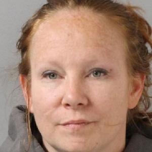 Mulher foi presa por falsa comunicação de crime - Davidson County Jail
