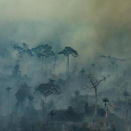 23.ago.2019 - Incêndio da floresta amazônica no município de Altamira (PA) - Victor Moriyama / Greenpeace