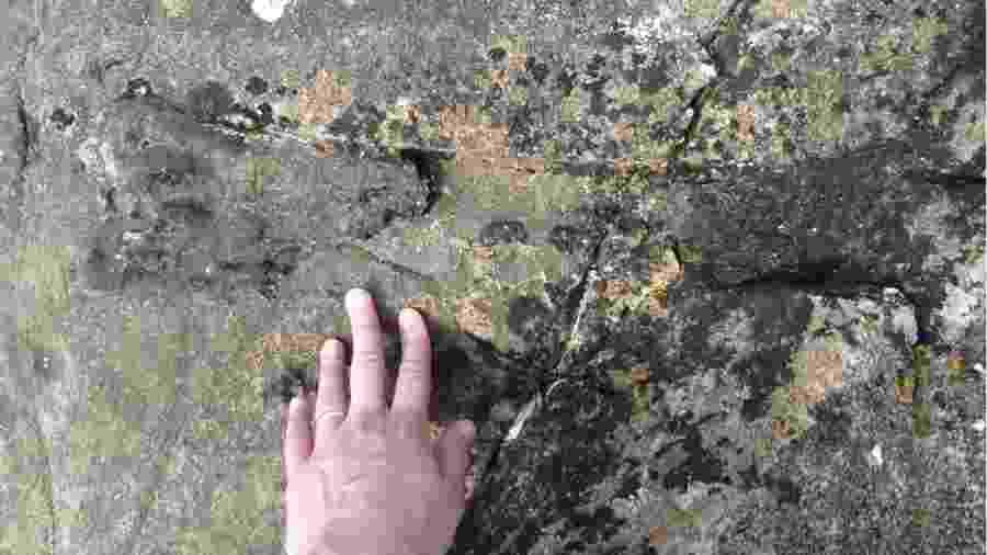 Fóssil foi encontrado na costa em Eigg, uma pequena ilha da Escócia - E Panciroli