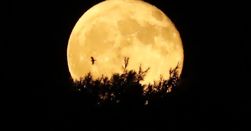 17.set.2016 - Lua cheia ilumina o céu de Jerusalém na noite de sábado