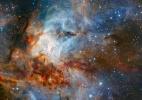 Astrônomos captam imagem detalhada do aglomerado estelar a 5.500 anos luz da Terra (Foto: ESO/K. Muzic / HANDOUT/EFE)