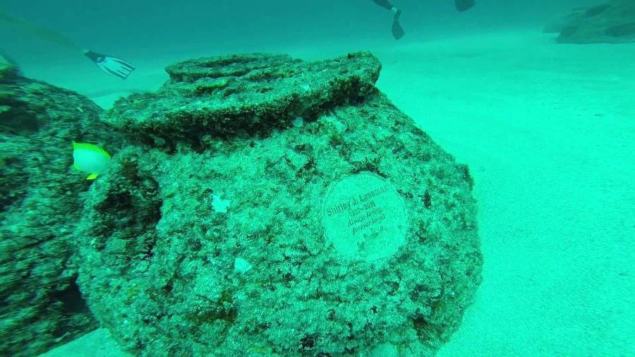 O coral artificial da Eternal Reefs traz placa de bronze com informações do falecido e dados sobre a localização no mar - Divulgação