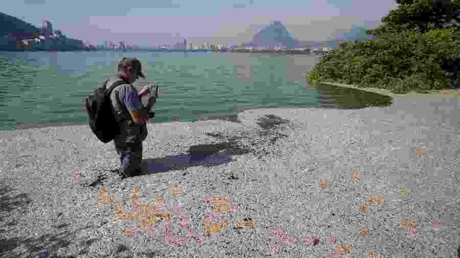 21.dez.2018 - O biólogo Mario Moscatelli observa peixes mortos na lagoa Rodrigo de Freitas - Márcia Foletto/Agência O Globo