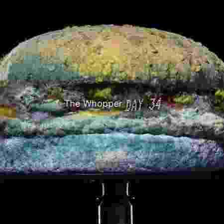 Vídeo do Burger King mostra como fica o sanduíche Whopper após 34 dias  - Reprodução/YouTube/Burger King