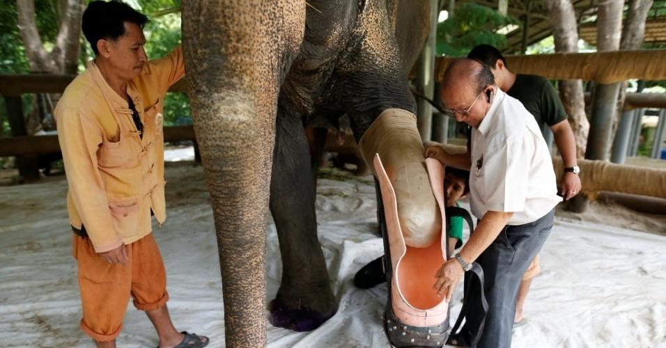 30.jun.2016 - Um desses elefantes é Motola. O animal recebeu uma prótese fabricada pela Fundação Asiática para Elefantes em Lampang, na Tailândia, para conseguir caminhar sem dificuldades