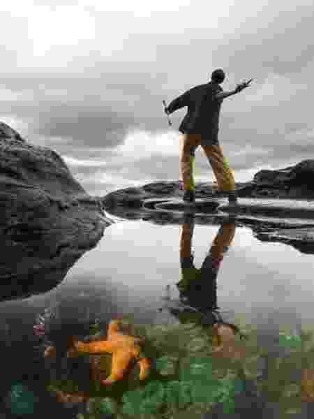 As poças de maré foram um laboratório natural para Robert Paine - Passion Pictures