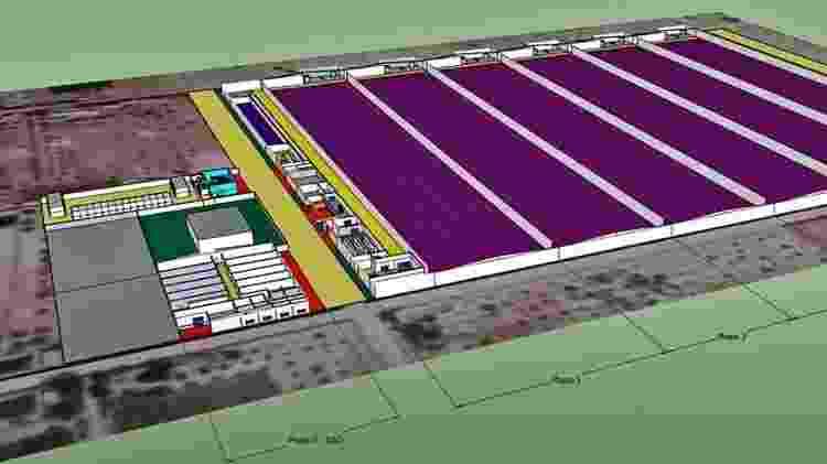 GreenFactory Emirates vai ocupar o terreno equivalente a 22 campos de futebol - Divulgação/ GrowGroup - Divulgação/ GrowGroup