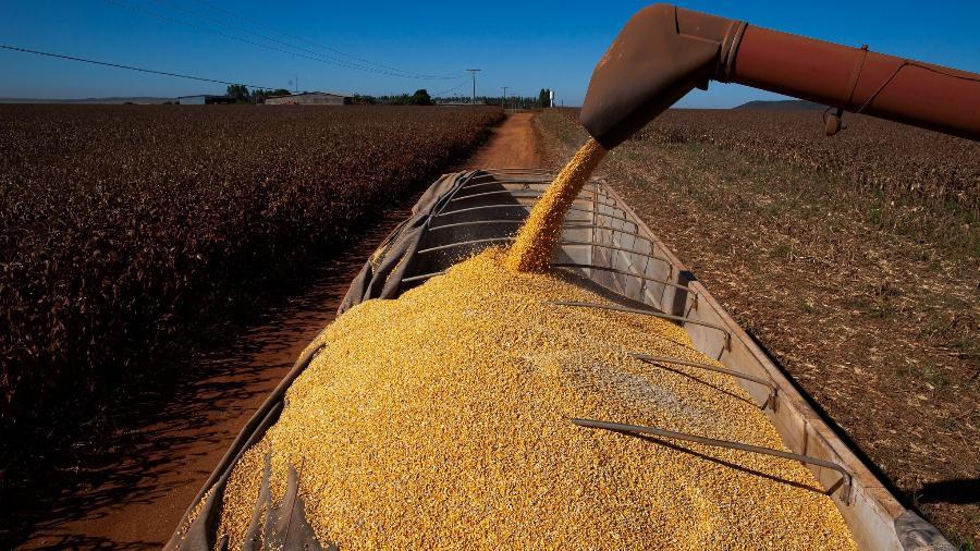 Os produtores brasileiros devem colher 68 milhões de hectares na safra agrícola de 2021 - Divulgação/CNA (Confederação Nacional da Agricultura)
