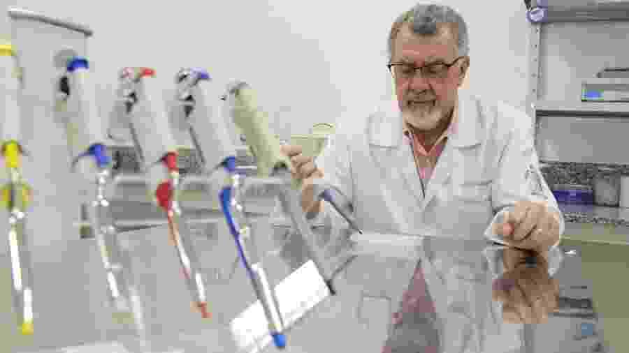 Mário Abbud Filho, coordenador de pesquisa sobre rim na Faculdade de Medicina de São José do Rio Preto (Famerp) - Elton Rodrigues/Divulgação