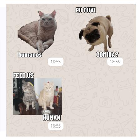 Stickers no WhatsApp - Reprodução