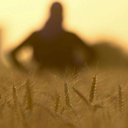 A agricultura é principal fonte de emissões de N2O a partir da atividade humana - Getty Images