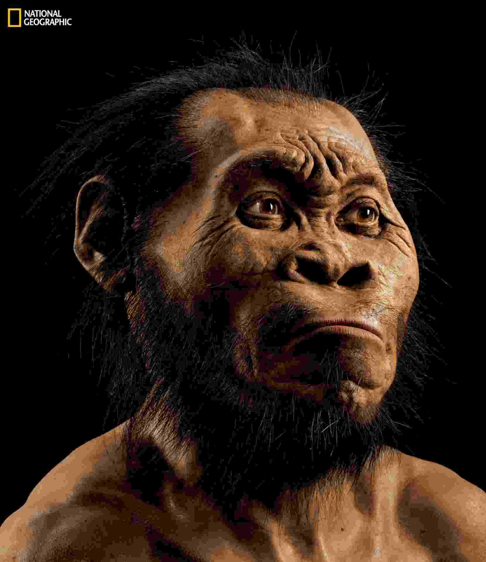 10.set.2015 - Uma antiga espécie do gênero humano desconhecida até agora foi descoberta em uma caverna da África do Sul, onde foram exumados os ossos de 15 hominídeos, anunciou nesta quinta-feira uma equipe internacional de cientistas. A nova espécia foi batizada de 'Homo Naledi' e classificada dentro do gênero Homo, ao qual pertence o homem moderno - Mark Thiessen/National Geographic