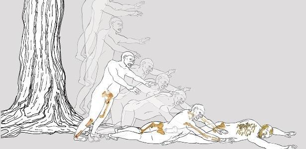 Ilustração mostra como teria morrido Lucy, após queda de árvore