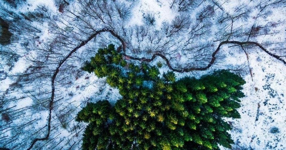 """7.jul.2016 - Esta foto tirada por Michael Bernholdt Rasmussen na Dinamarca venceu a competição de fotos aéreas organizada pelo site Dronestagram na categoria """"Natureza e Vida Selvagem"""". Nas palavras dele: """"Procurei padrões e linhas criadas pela natureza, como esse riacho que rodeia a floresta de pinheiros. Mas também busquei padrões e linhas em estradas sinuosas e marcas de equipamentos agrícolas feitas pelo homem"""""""