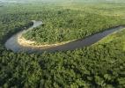 Em meio a avanço agrícola, defensores do Pantanal temem que nova lei fragilize proteção ambiental (Foto: Getty Images)