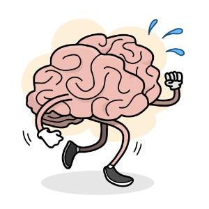 20set2016---cerebro-fazendo-exercicio-14