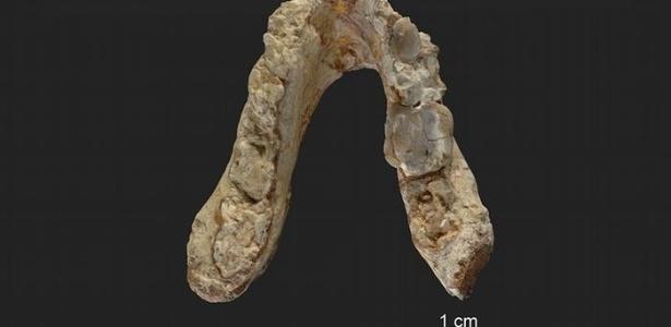 """Maxilar é um de dois fósseis conhecidos do hominídeo """"El Graeco"""""""