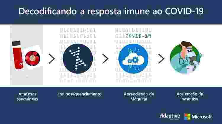 Microsoft fortaleceu parceria com a Adaptative  - Divulgação - Divulgação
