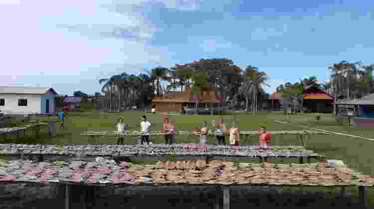 Moradores da Ilha do Cardoso, no litoral sul de São Paulo, produzem o peixe seco para doação a comunidades pobres - Divulgação - Divulgação