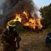 STR / Eurokinissi / AFP