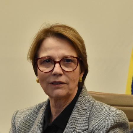 Tereza Cristina, ministra da Agricultura, durante evento na Fiesp em agosto - Roberto Casimiro/Fotoarena/Estadão Conteúdo
