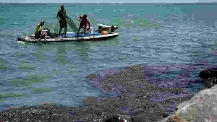 Óleo que atingiu mais de 450 praias do litoral nordestino e sudestino, em novembro de 2019 - Leo Malafaia/AFP