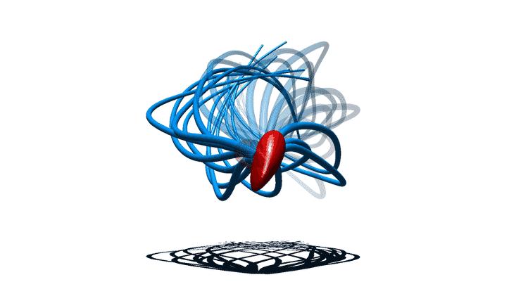 Movimento do espermatozoide é assimétrico - Polymaths-lab.com - Polymaths-lab.com