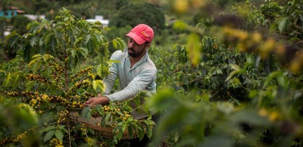 João Paulo Rodrigo, 33, na fazenda de café Forquilha do Rio, em Dores do Rio Preto (ES)