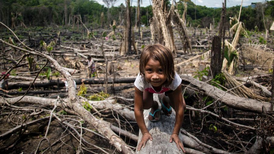 Sem acesso a água potável e comida, dois povos indígenas no Amazonas sobrem com a violência policial desde agosto do ano passado - Ana Mendes/Agência Pública