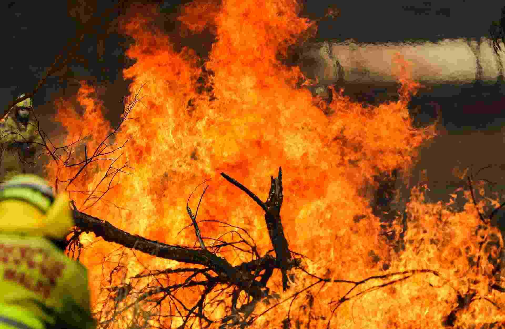 Imagem de 11 de novembro de 2019 mostra incêndio florestal em Taree, Nova Gales do Sul, na Austrália - Xinhua/Bai Xuefei