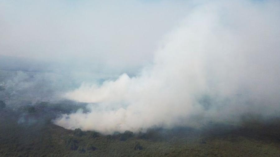 Com período de extrema seca, Pantanal viu o fogo tomar conta de parte de sua área nos últimos meses - Polícia Militar Ambiental/MS