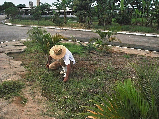 4.fev.2016 - Detentos do centro de detenção Tremembé 3 ajudam no combate ao mosquito