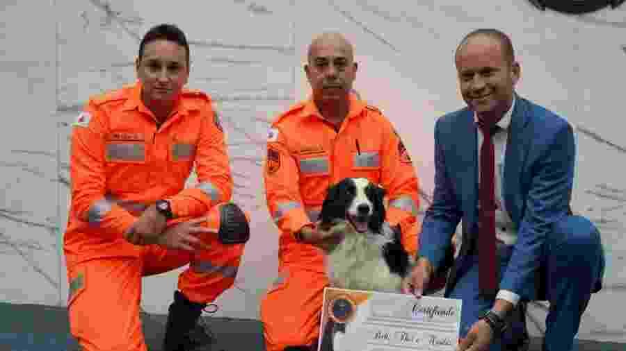 Homenagem a cães e militares que participaram de trabalho de resgate em Brumadinho  - Divulgação/CBMMG