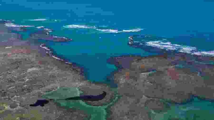17.out.2019 - Mancha de óleo em praia de Maragogi, no Alagoas - Diogo Nigro/Governo do Estado de Pernambuco/AFP