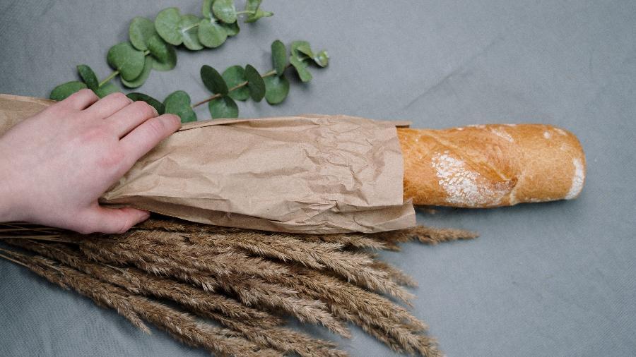 Pão e trigo - cottonbro/ Pexels