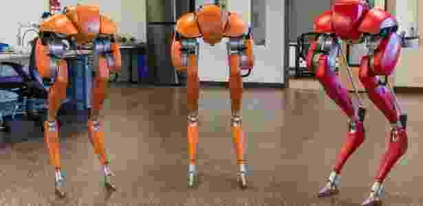 Cassie - Mitch Bernards/Agility Robotics/Divulgação - Mitch Bernards/Agility Robotics/Divulgação