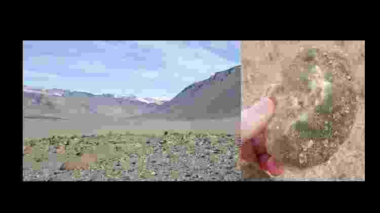 Cianobactérias vivendo sob rochas de quartzo nos vales secos de McMurdo, na Antártica - Reprodução - Reprodução