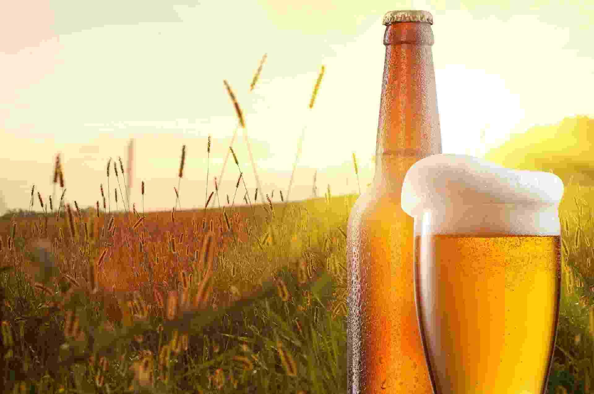 Cerveja e campo de cevada - iStock/artJazz