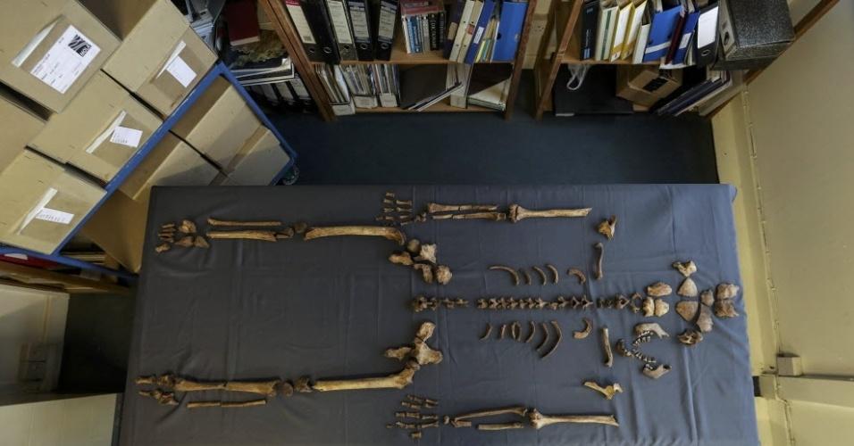 16.nov.2016 - Arqueólogos encontraram 94 túmulos datados dos séculos 7 ao 9 d.C, em Norfolk, na Inglaterra. No local estavam 81 caixões feitos de carvalho. Os pesquisadores acreditam que o local tenha sido um cemitério cristão daquela época
