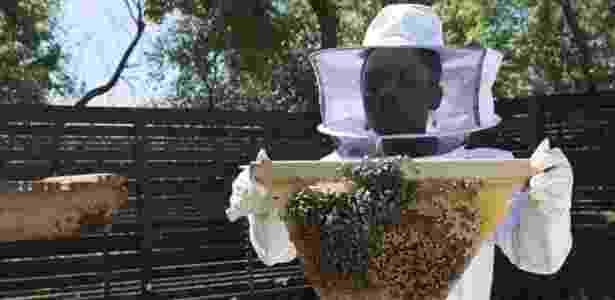 Divulgação Me and the Bees
