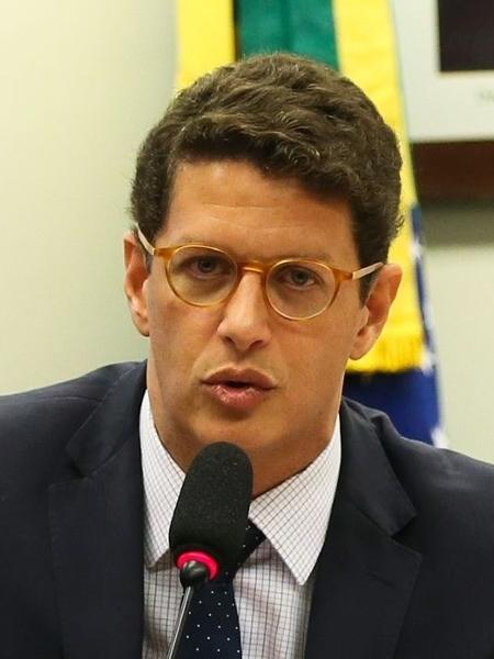 Ricardo Salles, ministro do Meio Ambiente - José Cruz/Agência Brasil