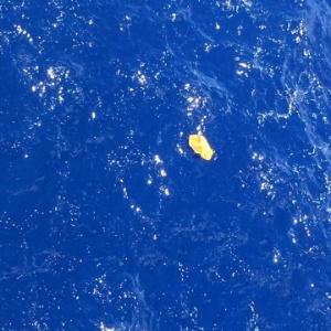 O capitão Tarek Wahba, da companhia Maersk, publicou fotos no Facebook de objetos flutuantes encontrados no mar e que podem ser do avião da EgyptAir que está desaparecido