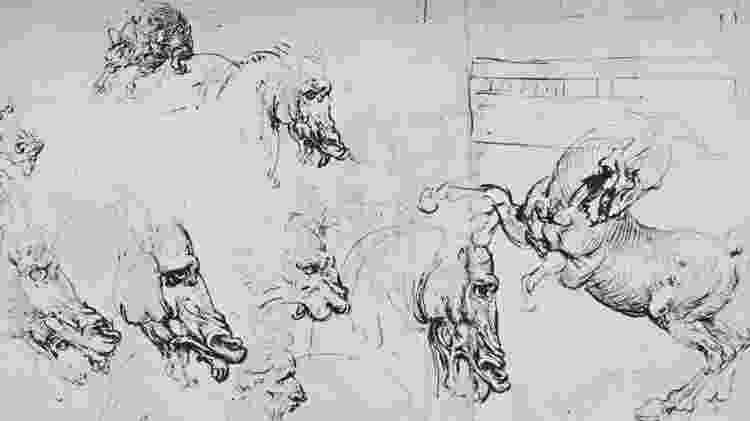 Diferentemente de outros desenhos de Da Vinci, o Homem Vitruviano expressa uma ideia concisa, segundo Allen - Getty Images